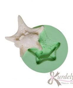 Deniz Yıldızı Üstünde Balık silikon kalıp - KK-1373